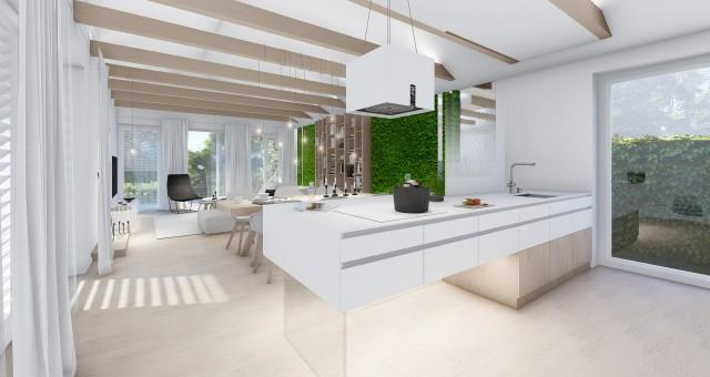 Návrh interiéru obytného prostoru v rodinném domě, Brno